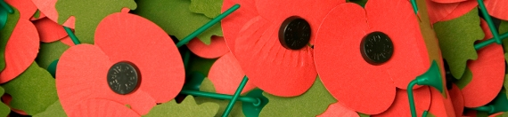 Remembrance Day Tribute
